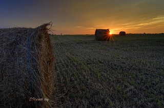 Hay day sunset