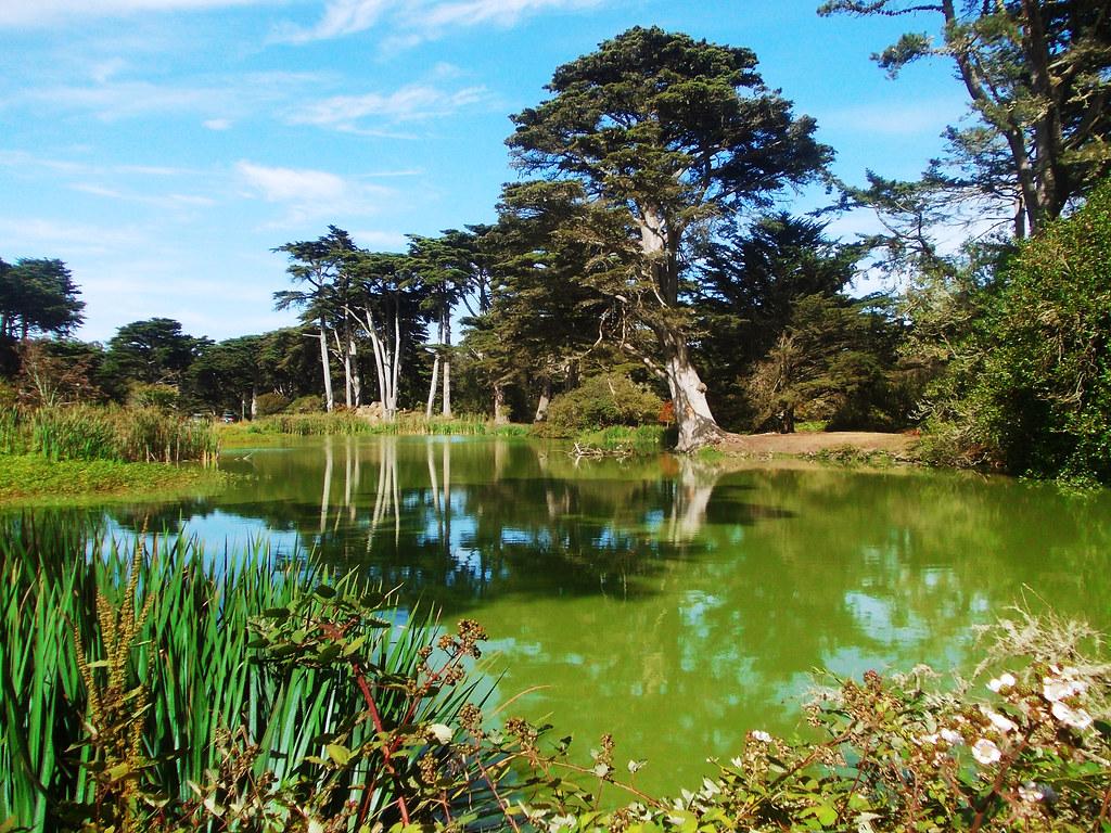 Travel Tips For California: Golden Gate Park, San Francisco, CA, USA