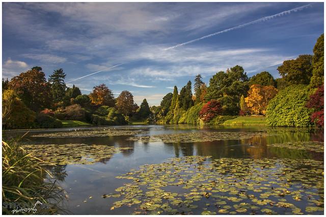 Autumnal Colours at Sheffield Park