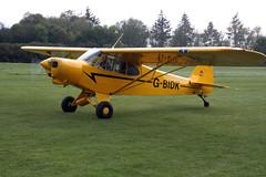 G-BIDK Piper L-21A-105 [18-565] Popham