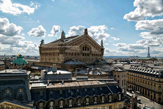 The roofs of Paris, Garnier Opera and Eiffel Tower