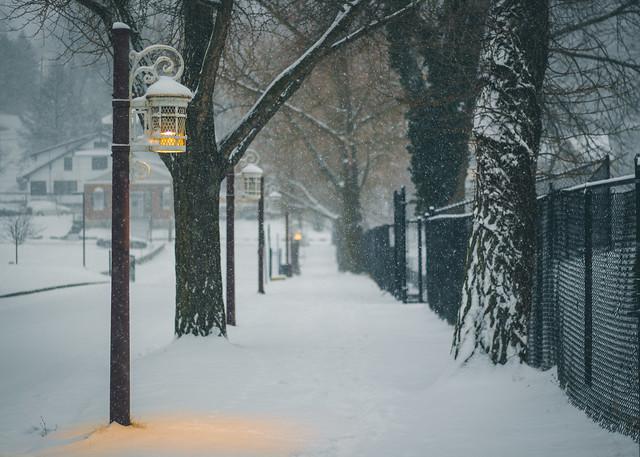 The Snowy Path