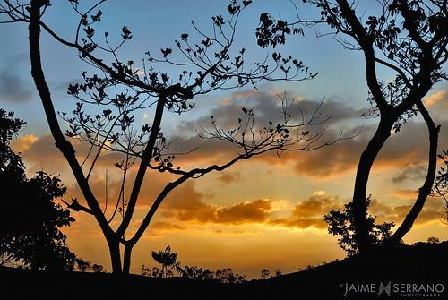 color atardecer ecuador tramonto paisaje siluetas sanroque piñas lontananza mirmir lozumbe ecuadoramalavida noctulicencia lacabañadelcafé altopuyango jaimeserranoart
