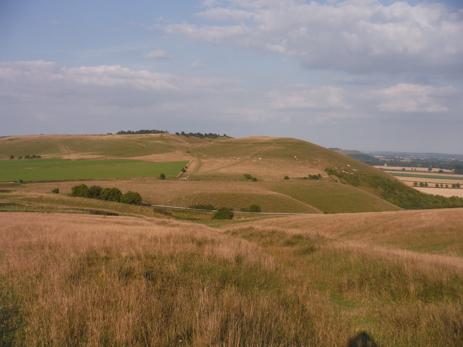Knap Hill from Walkers Hill SWC Walk 255 Pewsey or Marlborough Circular via Avebury