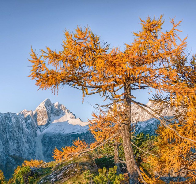 I like the combination of autumn and winter. #mountains #landscape #outdoors #outdooradventurephotos #alps #hiking #ourplanetdaily #ptk_nature #earthofficial #earthpix #igslovenia #slovenia #awesome_earthpix #autumn #photooftheday