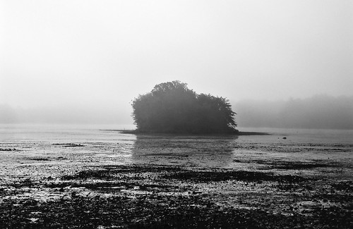 flickr foto photo image capture picture photography sony bw fog foggy nature island landscape water lake pond dark outdoor outdoors summer massachusetts sonydscw300 blackandwhite naturelover naturephotograph turnpikelake washingtonstreet newenglandfog plainvillemassachusetts newengland