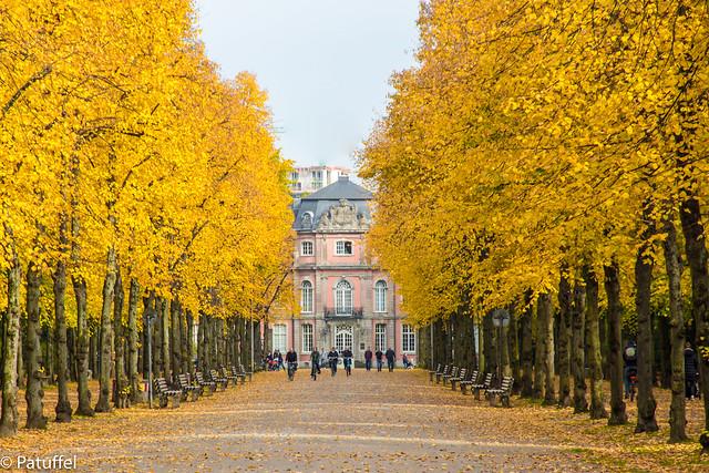 Duesseldorf Autumn - Schloss Jaegerhof