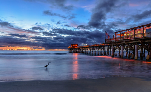 blueheron cocoabeach longexposure sunrise bird ocean pier sky water chuckpalmer fav30 outdoor travel