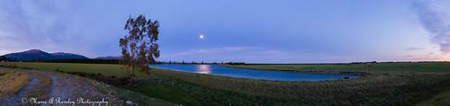 2015 20151125 827tramwayroad canonef24105mmf3556isstm canoneos6d canterbury dusk lakesomerslea mareeareveleyphotography mountsomers newzealand november somersleafarmlimited southisland sunset nz mareeareveley