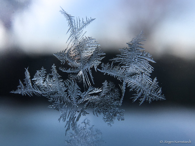 Ephemeral beauty of winter
