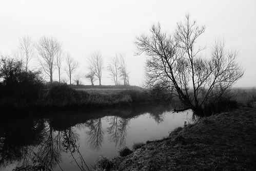 clevedon northsomerset england sony a6000 outdoors blackandwhite blackwhite monochrome bw trees river riverbank morning reflection uk nature britain