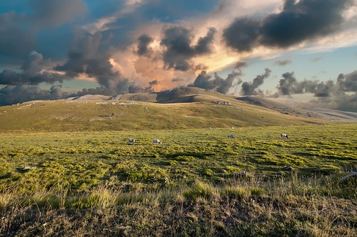 sony sonyalpha italy italia paesaggio landscape travel adventure nature scenic exploration view vista breathtaking tranquil tranquility serene serenity calm marioottaviani green grasslands clouds nuvole cows horses cavalli mucche abruzzo