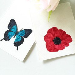 Help! Which one should I watercolor for our video newsletter on the 15th? Vote below! 1⃣butterfly 2⃣poppy
