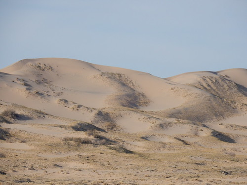 Mojave National Preserve - Kelso Dunes - 2