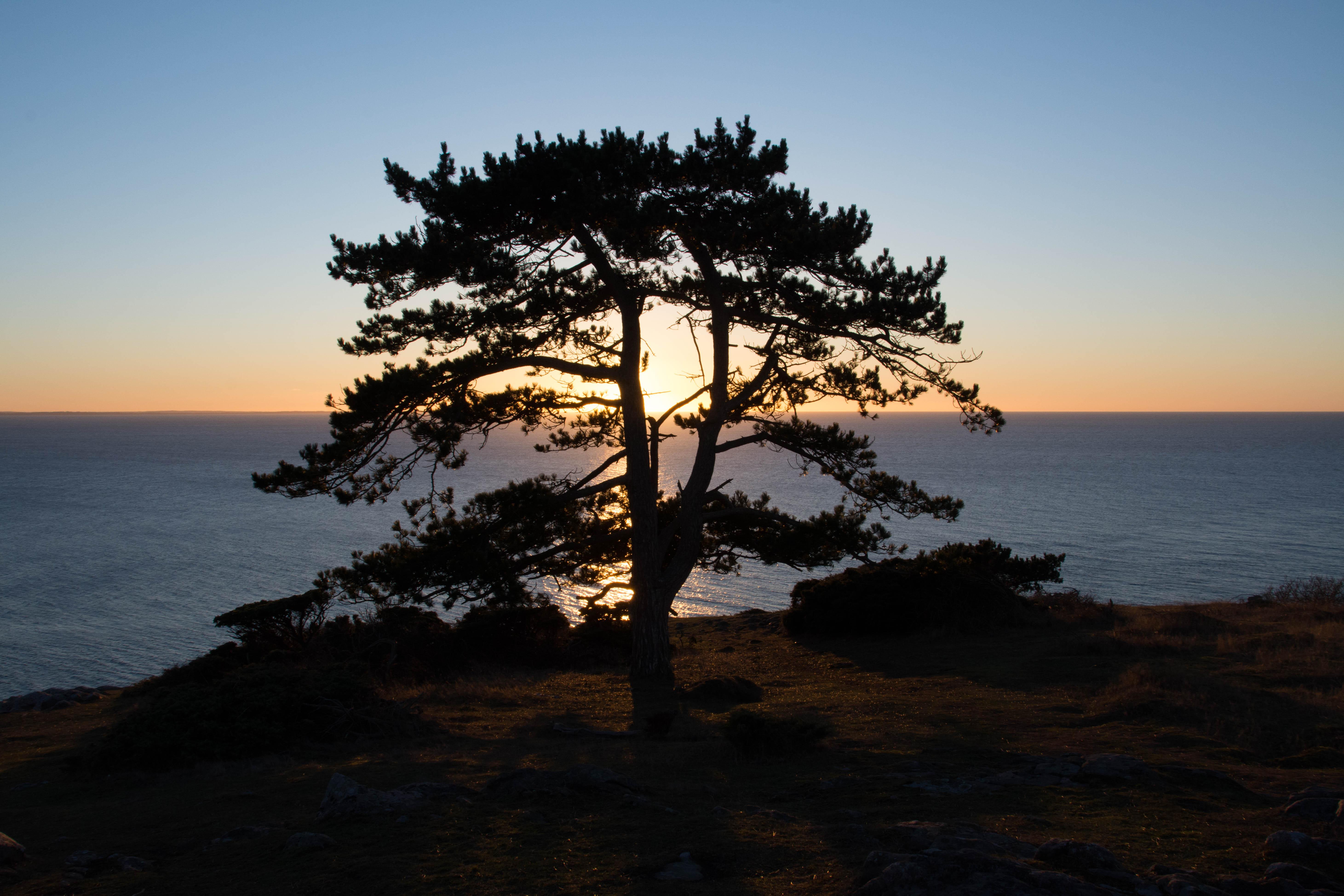 20170115-Kullaberg winter sunset.jpg