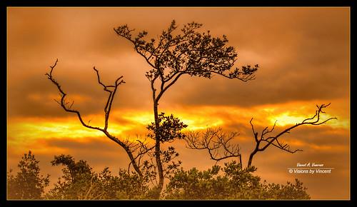 sunrise dawn ngc greatphotographers