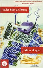 Javier Sáez de Ibarra, Mirar al agua