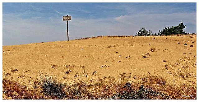 Maasduinen - Ontwikkeling natuurterrein