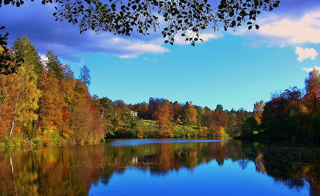 Autumn at Bear Lake near Stuttgart,  reflectons, 73374/5849
