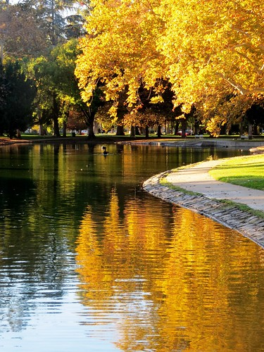 california park city trees light urban lake fall nature water leaves reflections walking landscape photography amber pond seasons sacramento flckr williamlandpark moonjazz11