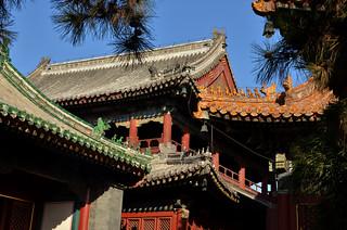 Beijing, Lama Temple-DSC_9708p by Milan Tvrdý