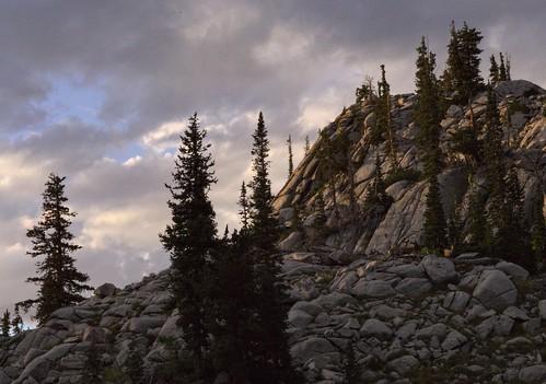 sunset pine wasatch bell dusk deer granite buck conifer bellscanyon wasatchmountains lonepeakwilderness upperbellcanyonreservoir lebarodea