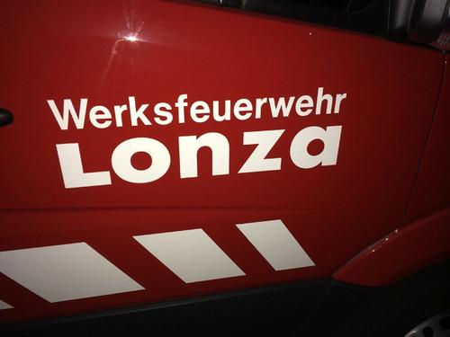Lonza 012
