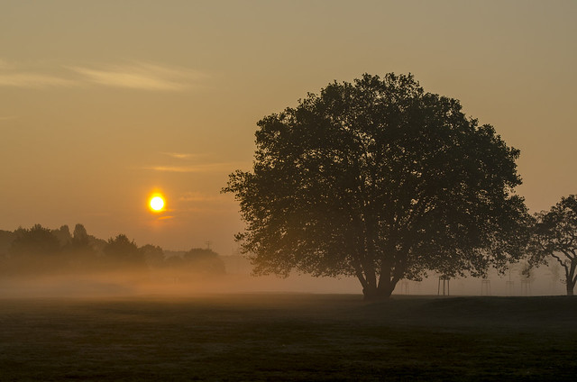 Tempelhof Sunrise