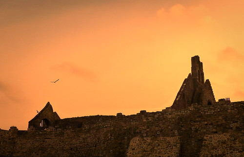 howth sunset ireland bird ruin walls stone sky evening stmarysabbey