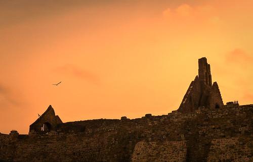 howth sunset ireland bird ruin walls stone sky evening stmarysabbey