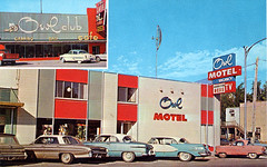 Owl Motel, 1960's | by Roadsidepictures