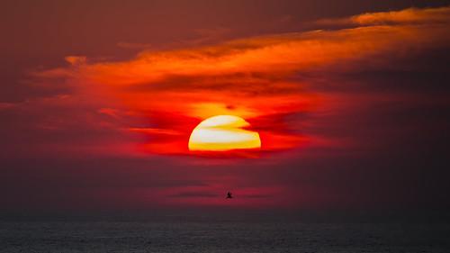 ocean beach sunrise maryland atlantic oceancity oc