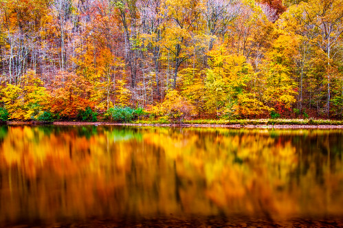 longexposure autumn trees red orange lake color reflection fall nature water leaves yellow horizontal forest reflections landscape outdoors pond colorful day seasons nobody symmetry westvirginia symmetrical rectangle beechfork