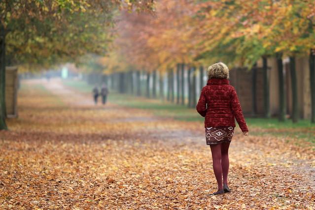 L'automne met ses plus beaux habits...