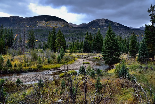 The Colorado River Flowing Through the Valley of the Coyote (Rocky Mountain National Park)