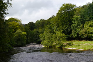 River Wharfe upstream of the Wooden Bridge, Bolton Abbey | by pluralzed