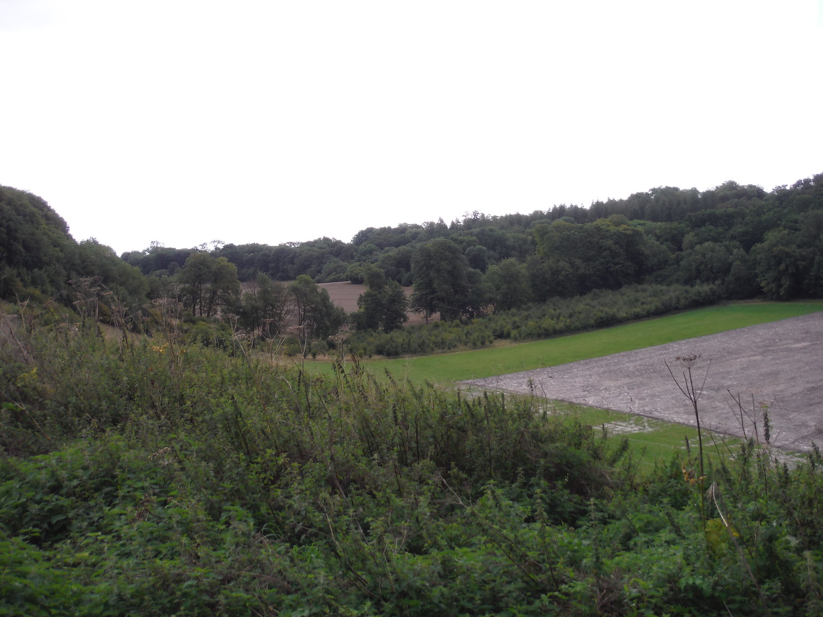U-Shaped Valley (with dredged silt from Fonthill Lake) SWC Walk 248 Tisbury Circular via Hindon