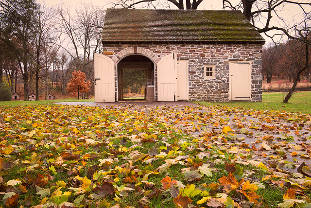 Fall at Valley Forge