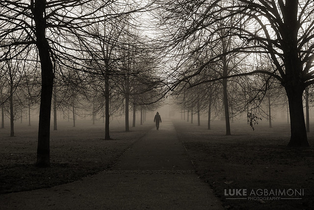 Walk in the woods - Kensington Gardens