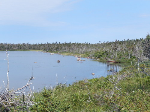 Gros Morne NP - Berry Head Pond - 1