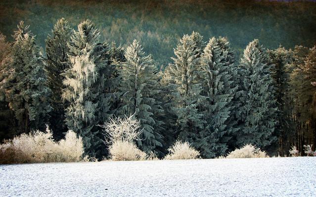 L'inverno ...