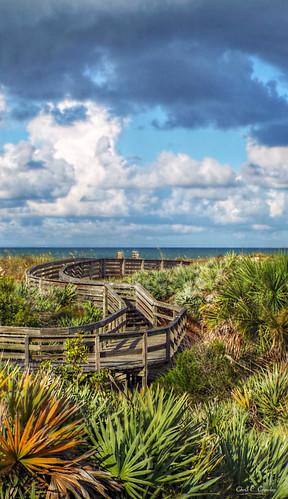 palmsonthedunes ponceinletflorida daytonabeacharea centralflorida florida beach ocean sea water sky clouds bluesky palms palmettopalms dunes walkway