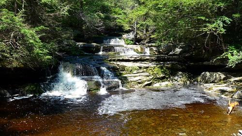 park new york ny swimming hole falls explore catskills kills kerhonkson vernooy