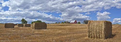 sky clouds rural colorado farming barns co farms redbarns rurallife ruralliving