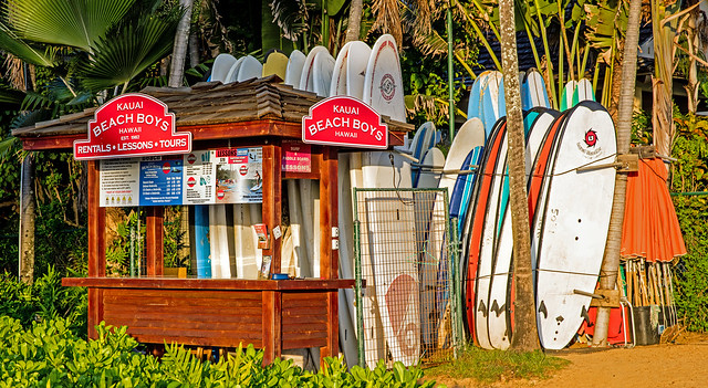 We're Closed -- Surf's Up !