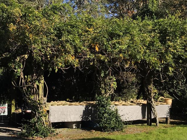 Sweetgrass Baskets at Magnolia Gardens