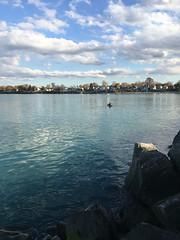 Lake Erie Fishing | Visit Lorain County