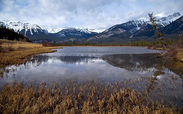 Jasper national park(explored)