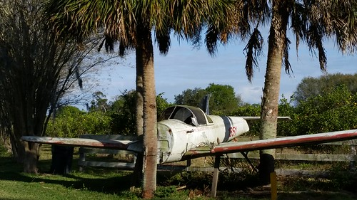 aviation airplanes airports jet planes aircrafts landscape florida lovefl frostproof avonpark abandoned trees palmtrees fence grass transport transportation shade lakeclinch silverlake reedylake vehicles retired arrivals finaldestination wings similarity