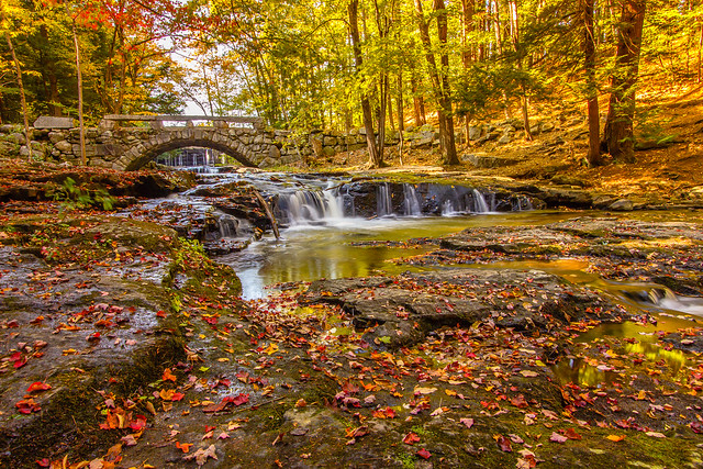 Autumn at Vaughn Falls - Explored 9/15/15